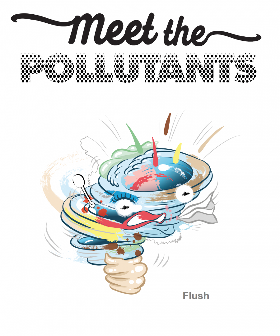 Meet the Pollutants - Memory Card Game