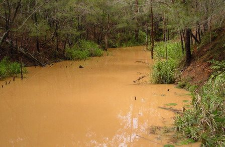 The Case for Best Practice Erosion and Sediment Control Compliance - a SEQ Perspective (2013)